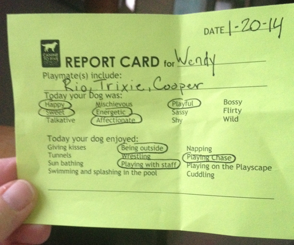 A good report card nancynall wendynote maxwellsz